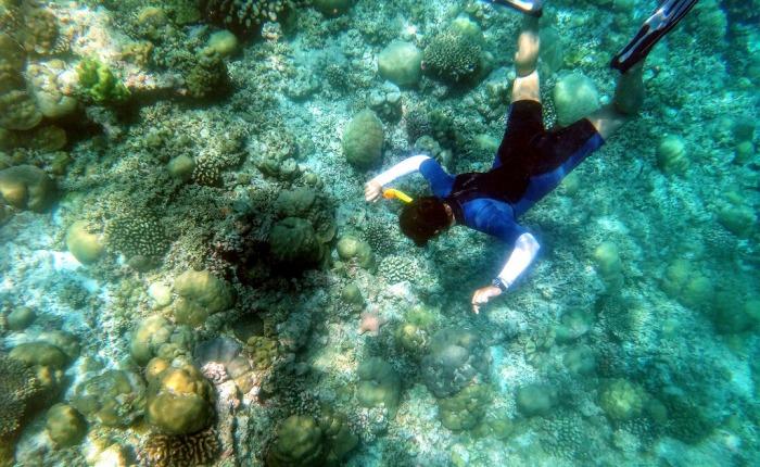 ТОП-5 вещей, которые необходимо сделать наМальдивах