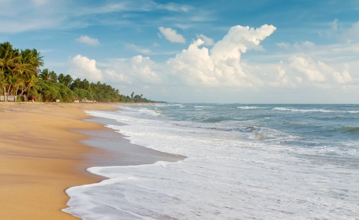 ТОП-5 вещей, которые нужно сделать на Шри-Ланке вместе сдетьми